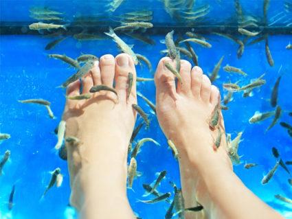 Рыбки доставят вам непередаваемые ощущения