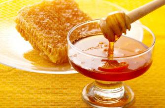 Пчелиные продукты очень полезны для организма